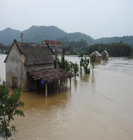 Hạ lưu sông Gianh ở Ba Đồn
