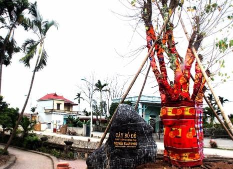 Cây bồ đề do Thủ tướng Nguyễn Xuân Phúc trồng tại đền Trần Thương