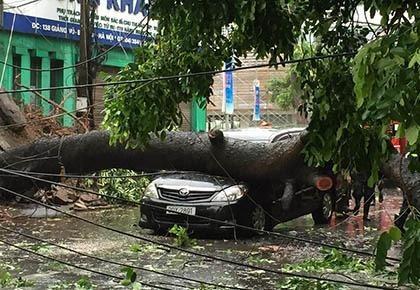 Một người chết, 5 người bị thương do bão số 1 - ảnh 2