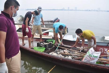 Cá chết Hồ Tây: Nhà máy 1.000 tỉ phải 'xin' nước thải - ảnh 1