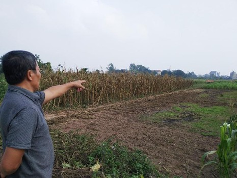 Hà Nội tạm dừng chuyển 2000 ngôi mộ vào khu dân cư - ảnh 1