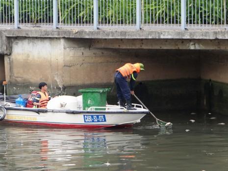 Thời hạn cứu đàn cá ở kênh Nhiêu Lộc - Thị Nghè - ảnh 1