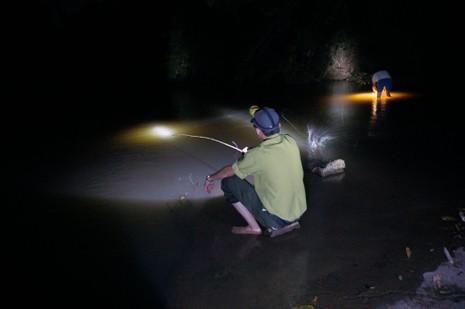 Vườn Quốc gia Yok Don mùa này có gì đẹp? - ảnh 10