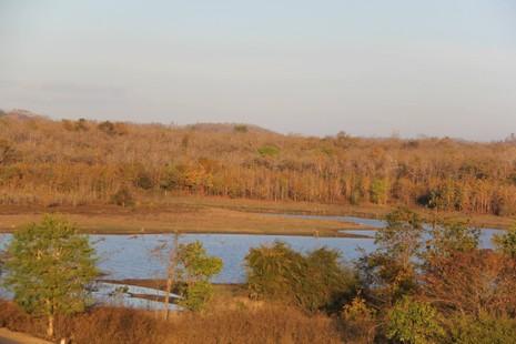 Vườn Quốc gia Yok Don mùa này có gì đẹp? - ảnh 4