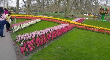 Keukenhof: Vườn hoa xuân đẹp nhất thế giới - ảnh 6