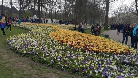 Keukenhof: Vườn hoa xuân đẹp nhất thế giới - ảnh 5