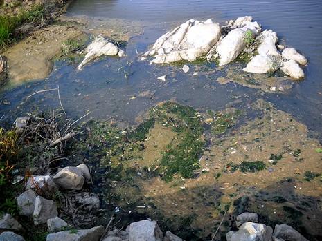 Hãy cứu dòng sông Ba - ảnh 5