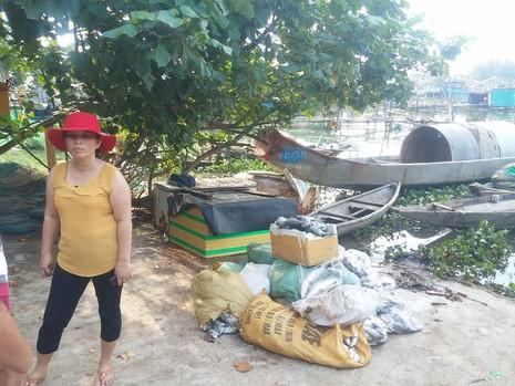 Cá nuôi lồng ở Huế tiếp tục chết hàng loạt - ảnh 1