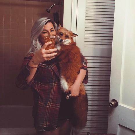 Tình yêu kỳ lạ của cáo và chó - ảnh 11