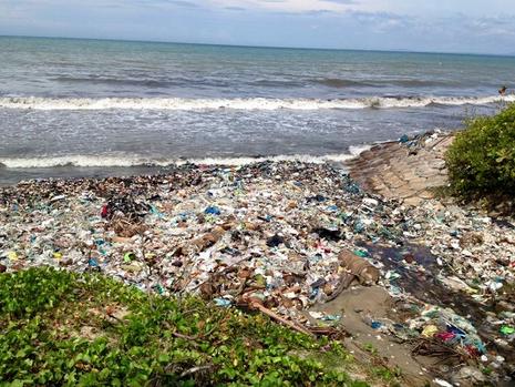 Kiểm tra thông tin biển Mũi Né đầy rác trên Facebook của du khách Nga - ảnh 3