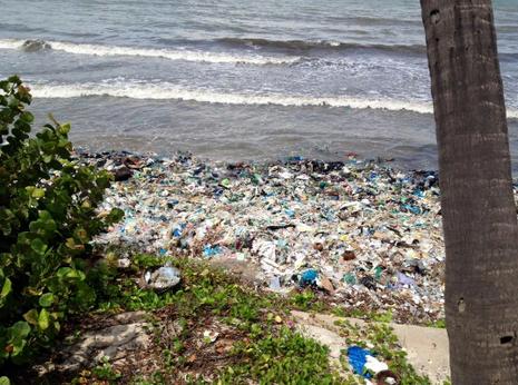 Kiểm tra thông tin biển Mũi Né đầy rác trên Facebook của du khách Nga - ảnh 2