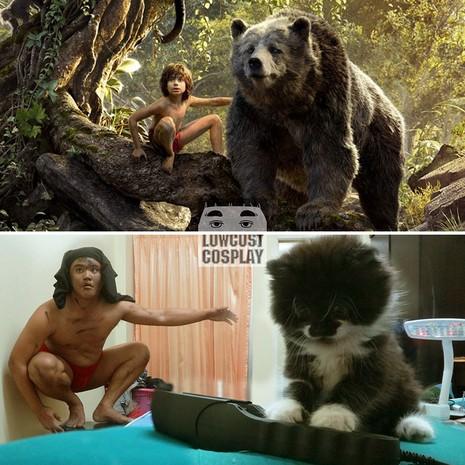 Gấu Baloo được thay thế bởi mèo