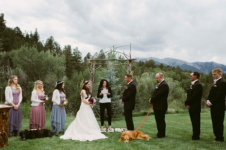 Chú chó gắng gượng dự đám cưới chủ trước khi qua đời - ảnh 6