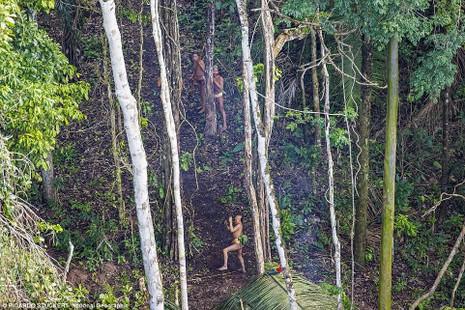 Phát hiện bộ lạc bí ẩn trong rừng Amazon - ảnh 4