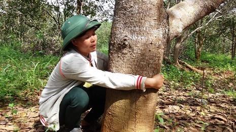 Vụ nổ súng ở Đắk Nông: Tạm giam GĐ Công ty Long Sơn - ảnh 2