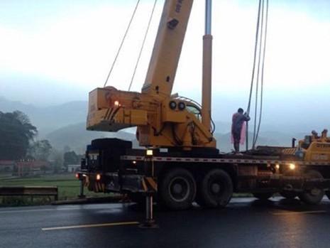 Xe tải lật nhào, heo tràn ra ruộng - ảnh 2