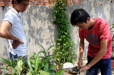Tận thấy thú chơi 'cây ăn thịt' ở Sài Gòn - ảnh 10