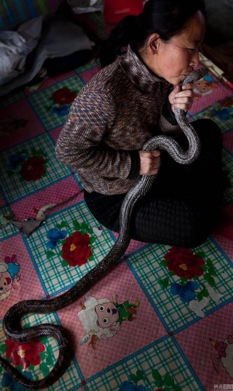 Nuôi hơn 20 con rắn trong nhà 'làm bạn' suốt 30 năm - ảnh 4
