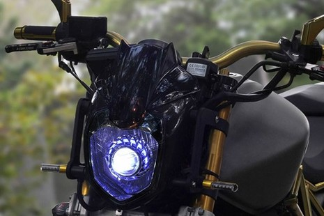Tận thấy Honda Hornet 600 mạ vàng 24k ở Việt Nam - ảnh 6