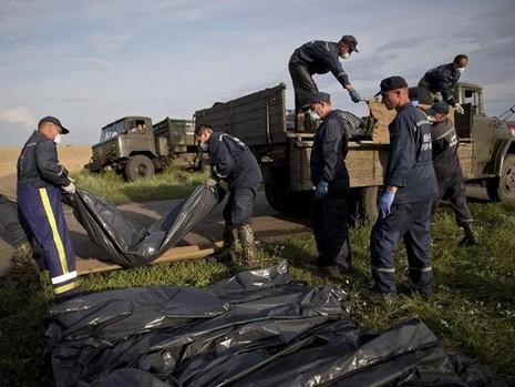 Báo Nga: Lực lượng Kiev bắn hạ máy bay MH17 của Malaysia Airlines - ảnh 1