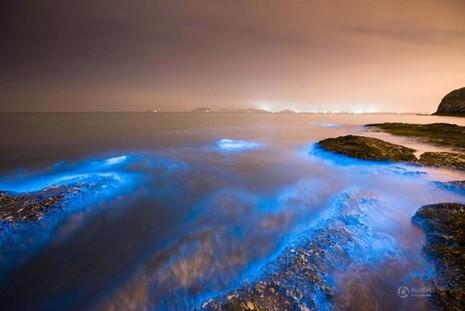 Bờ biển sáng xanh kỳ lạ ở Trung Quốc - ảnh 3