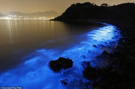 Bờ biển sáng xanh kỳ lạ ở Trung Quốc - ảnh 5
