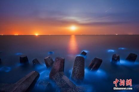 Bờ biển sáng xanh kỳ lạ ở Trung Quốc - ảnh 6