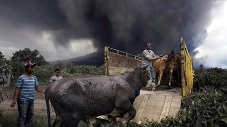 Indonesia: Núi lửa lại phun trào như ngày tận thế - ảnh 7