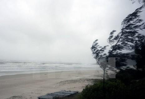 Bão số 1 ảnh hưởng và gây gió giật cấp 10-12 trên vịnh Bắc Bộ - ảnh 1