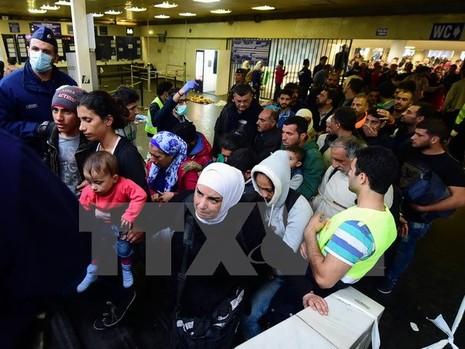 Hungary điều hàng nghìn quân đến biên giới chặn dòng người di cư - ảnh 1