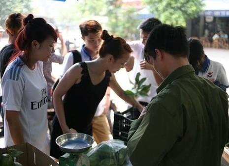 Lệ Rơi bán ổi ở Hà Nội sau những ngày rơi lệ ở showbiz - ảnh 3