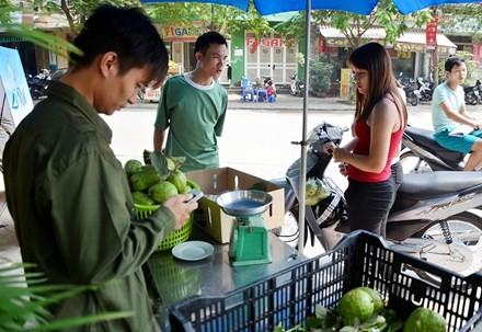 Lệ Rơi bán ổi ở Hà Nội sau những ngày rơi lệ ở showbiz - ảnh 1
