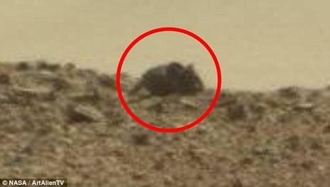 Bức ảnh cho thấy vật thể có hình thù như con chuột trên sao Hỏa