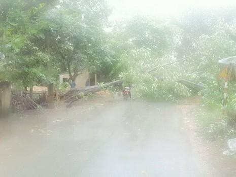 Hà Nội tiếp tục có mưa to về chiều, đề phòng ngập nặng - ảnh 1