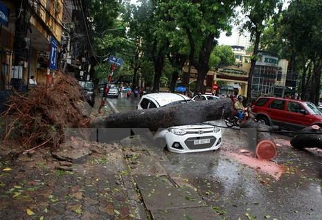 Thủ tướng Chính phủ ra công điện ứng phó với cơn bão số 2 - ảnh 1