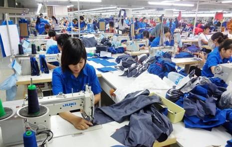 Hàng ngàn người lao động bị doanh nghiệp nợ đóng BHXH - ảnh 1
