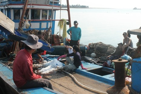 Ngư dân Quảng Bình vui vì bán được hải sản, tàu thuyền tấp nập ra khơi - ảnh 4