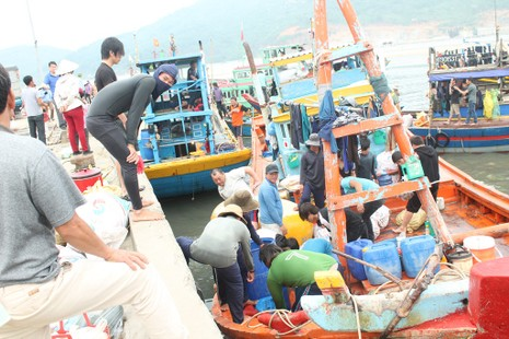 Thường vụ Quốc hội giám sát việc bồi thường cho ngư dân - ảnh 1
