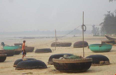 Nhiều tổ chức vào cuộc vụ cá chết ở miền Trung - ảnh 1