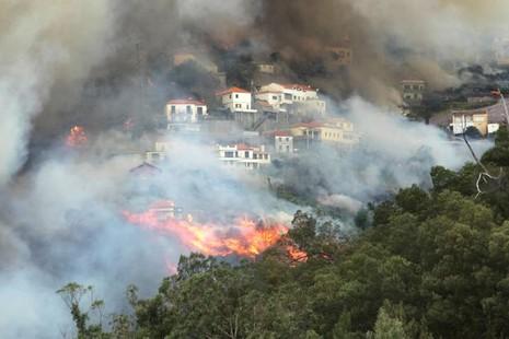 Cristiano Ronaldo dang tay cứu trợ đám cháy quê nhà  - ảnh 7