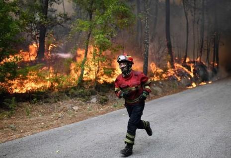 Cristiano Ronaldo dang tay cứu trợ đám cháy quê nhà  - ảnh 9