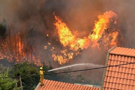 Cristiano Ronaldo dang tay cứu trợ đám cháy quê nhà  - ảnh 6