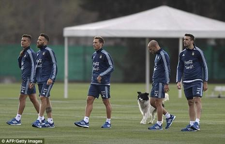'Cầu thủ' 4 chân thay thế Messi ở đội tuyển Argentina - ảnh 2