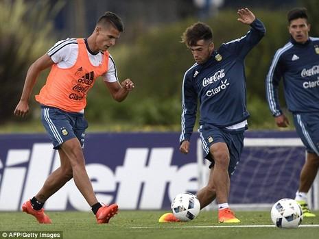 'Cầu thủ' 4 chân thay thế Messi ở đội tuyển Argentina - ảnh 9