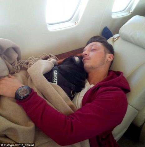 Mesut Ozil chơi bóng với cún cưng Paul Pugboa - ảnh 2