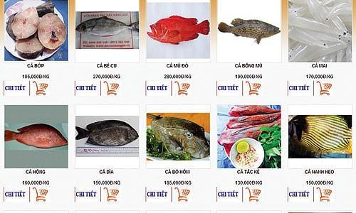 đi chợ, online, thông tin, sản phẩm, phí, giá