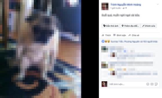 4 hành vi khiến người dùng Facebook phải trả giá đắt