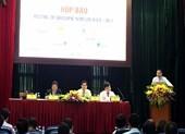 Quảng Nam nói về thông tin làm cáp treo ra Cù Lao Chàm
