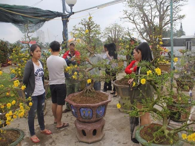 Mưa lớn, Đà Nẵng giảm 50% phí thuê mặt bằng chợ hoa