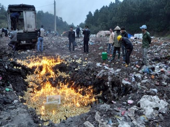 Hậu Giang: Tiêu hủy hơn 900 con gà nhiễm H5N1